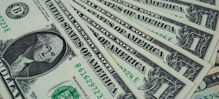 A row of dollar bills.