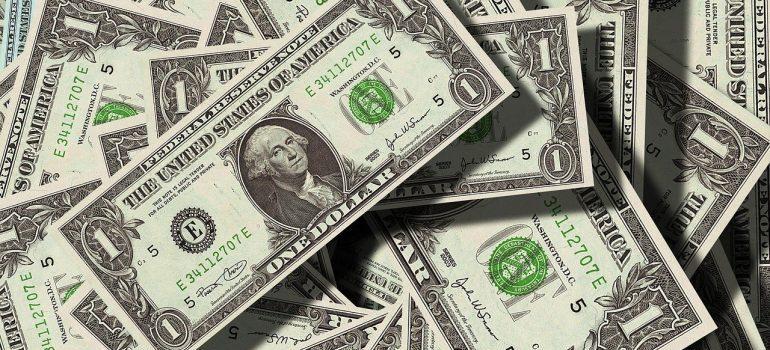 Evaluate local moving companies in Brooklyn - dollar bills