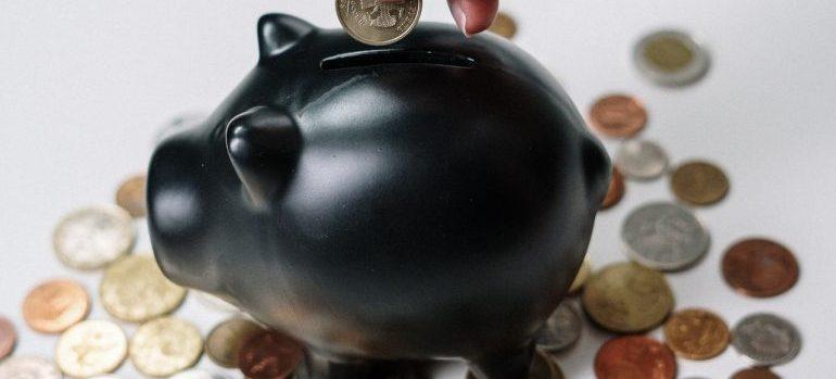 -piggy bank